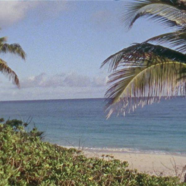 Super 8mm Bahamas Wedding Film by Heart Stone Films   Olivia + Fiesky