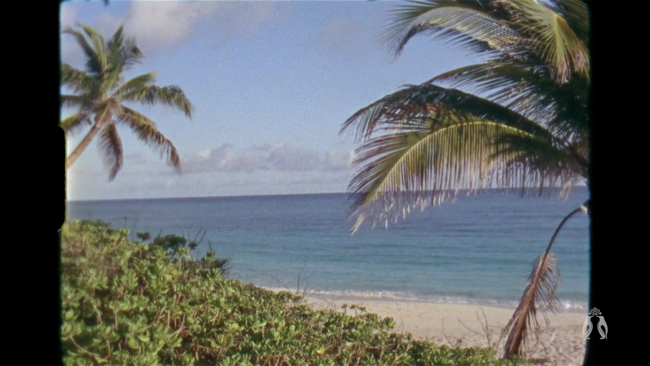Super 8mm Bahamas Wedding Film by Heart Stone Films | Olivia + Fiesky